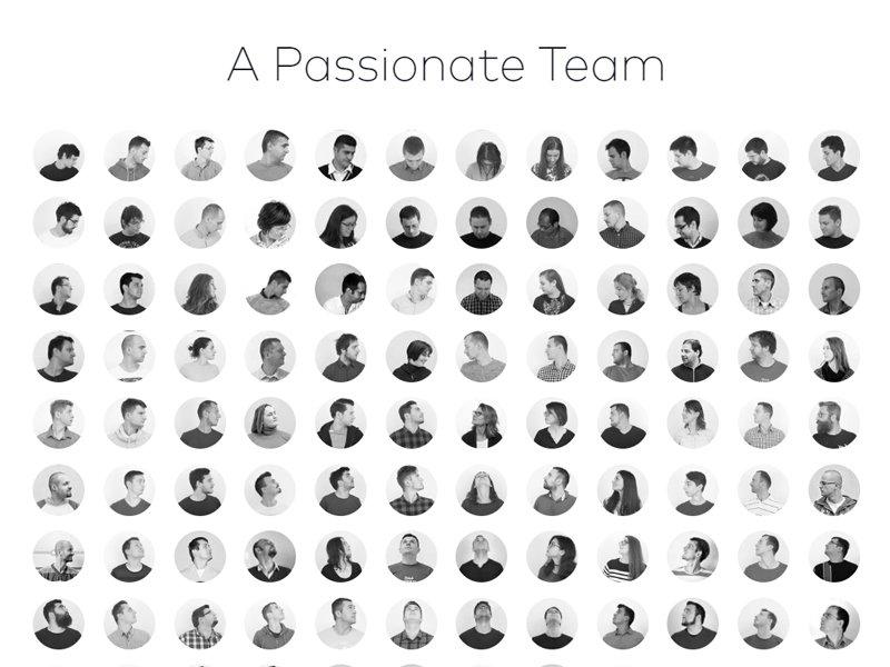 Digital Company Team Section