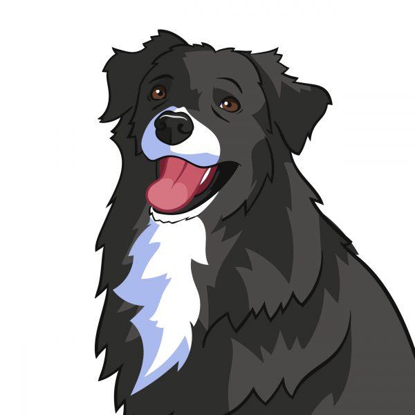 cartoon your dog