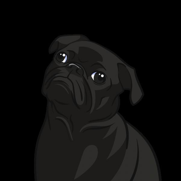 Turn your pet into a custom cartoon