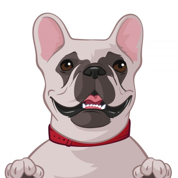 cartoon dog photo