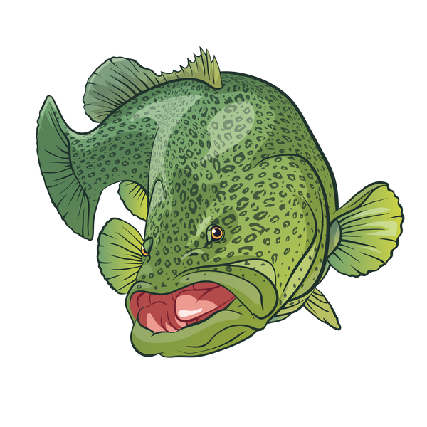 turn fish photo into a cartoon avatar